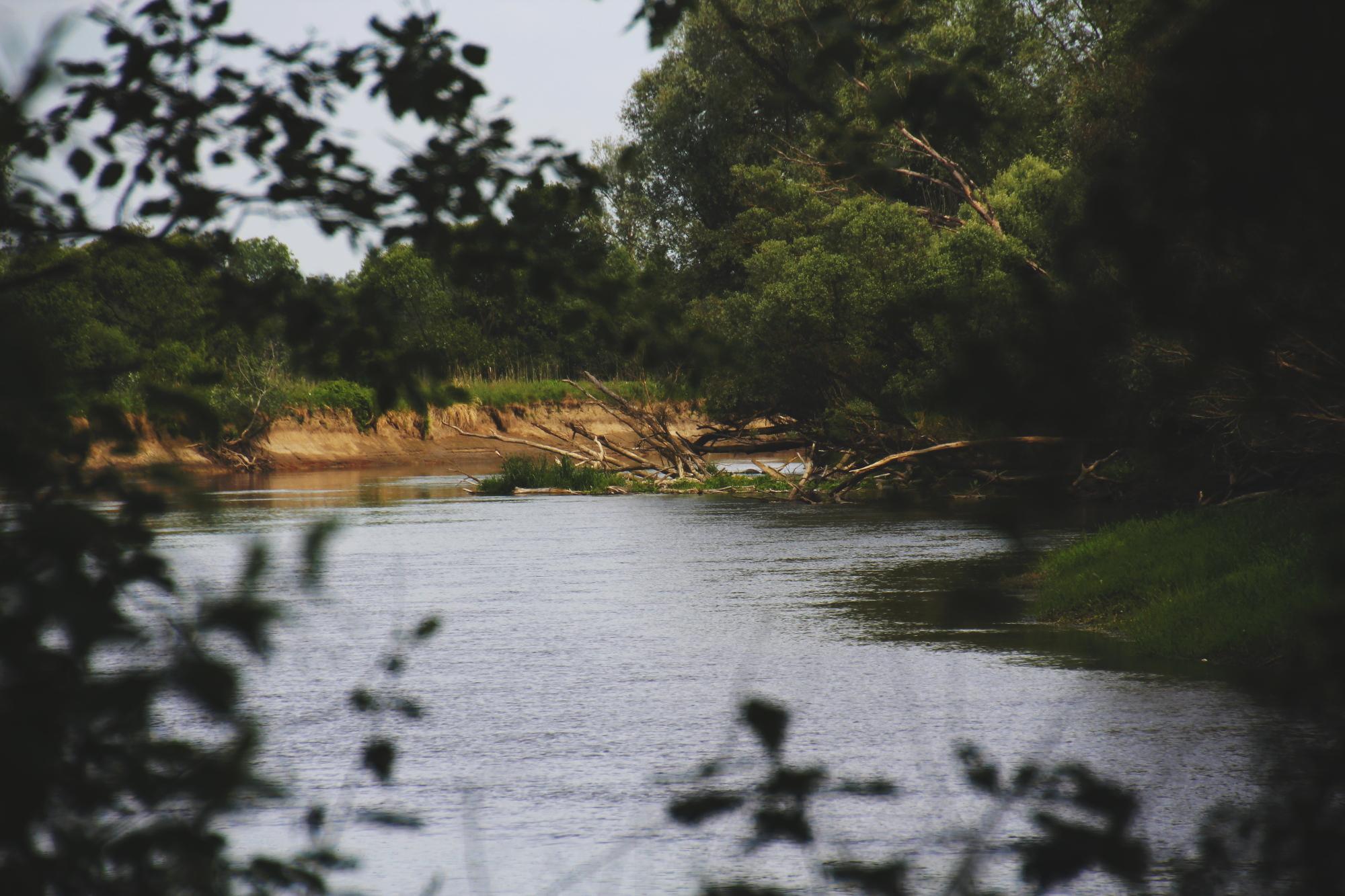 Rzeka Bug