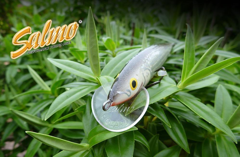 SALMO sprzedane dla brytyjskiej marki Fox International