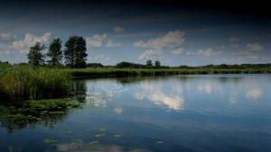 jezioro_slone_lowiska_lubelskie