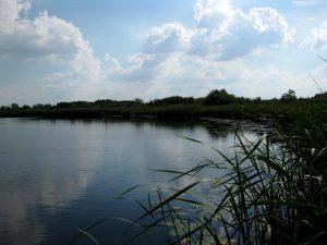 jezioro_slone_lowiska_lubelskie_1