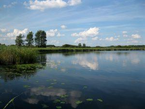 jezioro_slone_lowiska_lubelskie_10