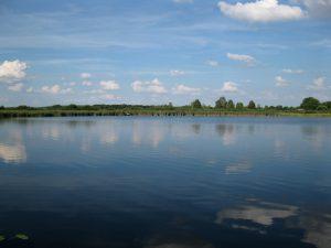 jezioro_slone_lowiska_lubelskie_12