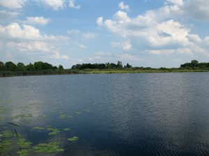 jezioro_slone_lowiska_lubelskie_2
