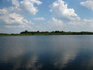 jezioro_slone_lowiska_lubelskie_6