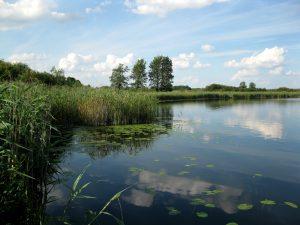 jezioro_slone_lowiska_lubelskie_9