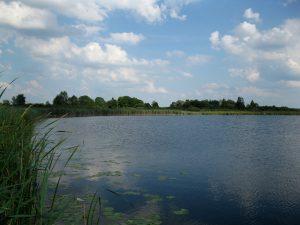jezioro_slone_lowiska_lubelskie_Chuteckie