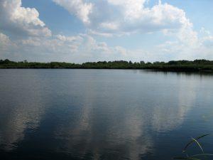 jezioro_slone_malo_znane_lowiska_lubelskie_4