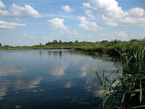 jezioro_slone_szczupakowe_lowiska_lubelskie