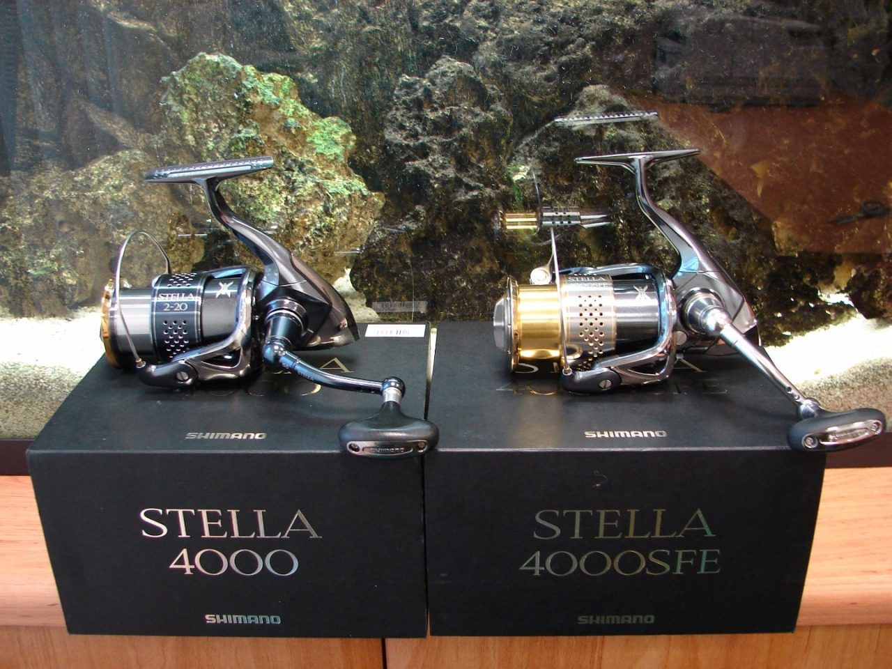 Stella JDM vs Stella EU